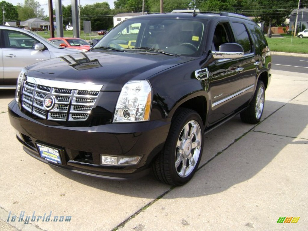 2011 Escalade Hybrid AWD - Black Raven / Ebony/Ebony photo #1