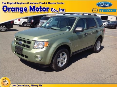 Kiwi Green Metallic 2010 Ford Escape Hybrid 4WD